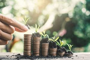 Springboard Website Designs female-hand-holding-money-on-table-in-nature-background-financial-growth-concept