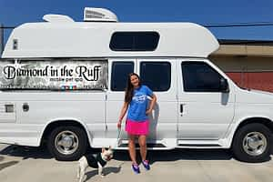 diamond in the ruff mobile dog grooming